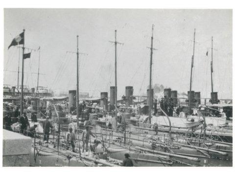 佐世保海軍より特派の駆逐艦、水雷艇14隻